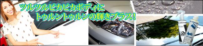 マイエターナル ファインプロテクト コーティング 塗面光沢復元剤